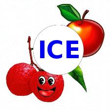 Apple Litchi on ICE