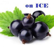 Blackcurrent on ICE